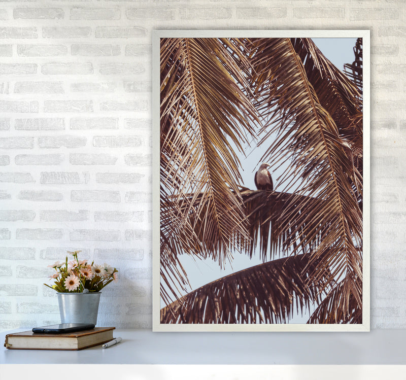 Eagle Photography Print by Victoria Frost A1 Oak Frame