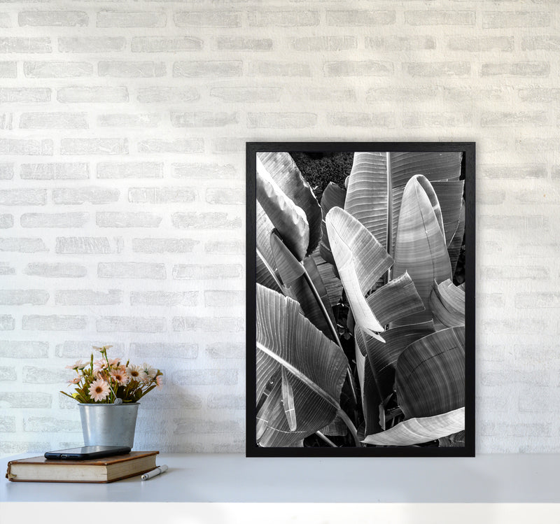 Palms Leafs Photography Print by Victoria Frost A2 White Frame
