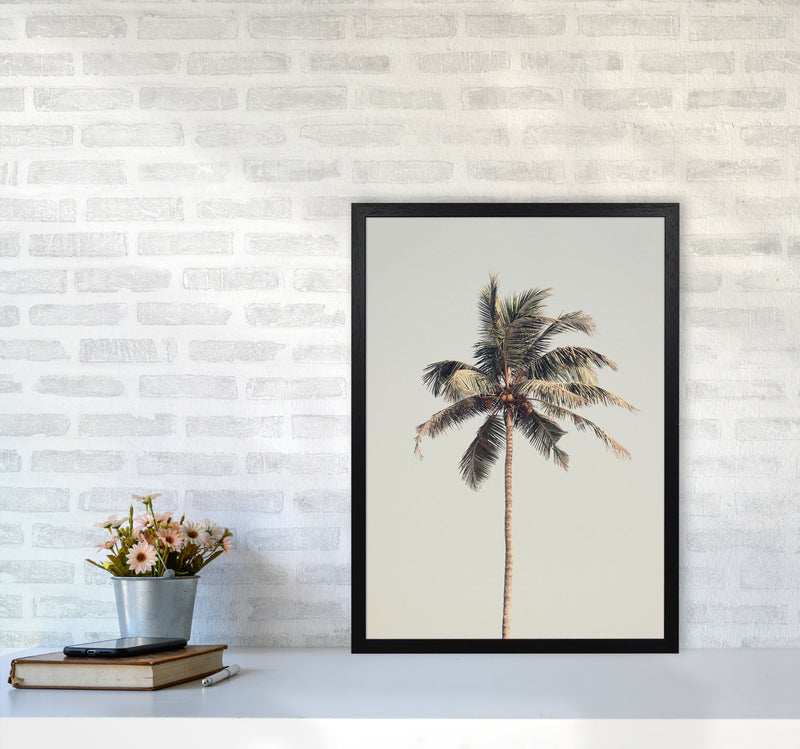 Palm tree by the beach Photography Print by Victoria Frost A2 White Frame