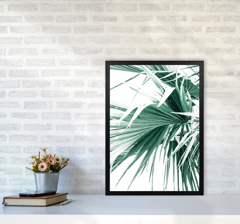 Palm Leaves Photography Print by Victoria Frost A2 White Frame