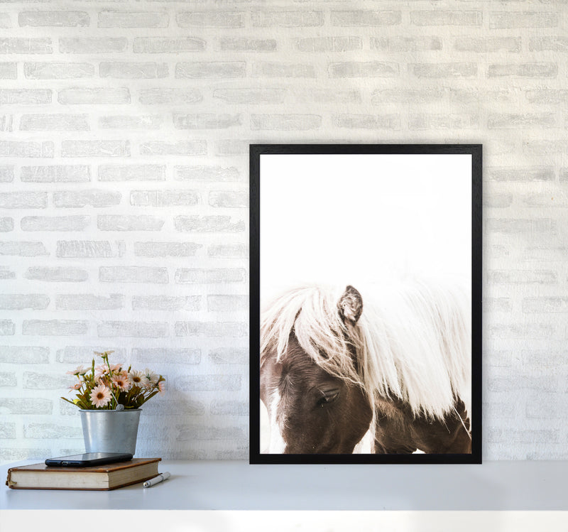Horse III Photography Print by Victoria Frost A2 White Frame