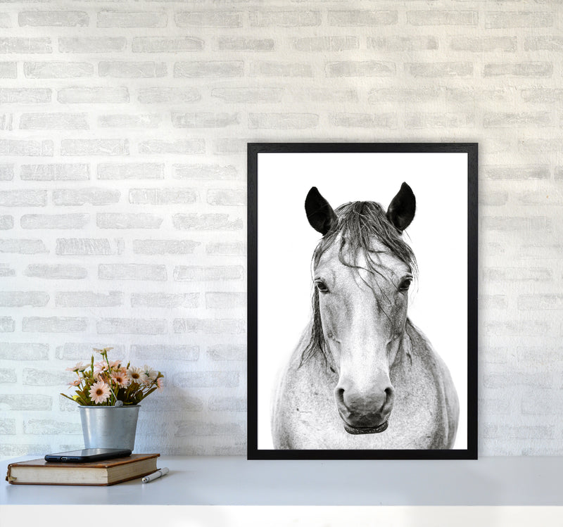 Horse I Photography Print by Victoria Frost A2 White Frame