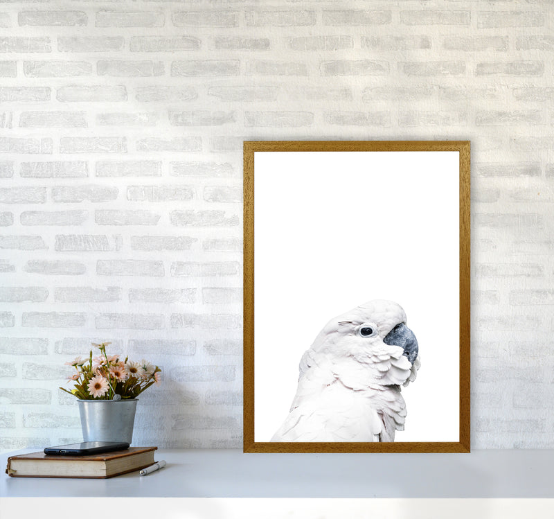 White Cockatoo Photography Print by Victoria Frost A2 Print Only