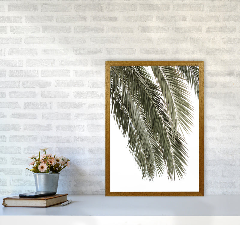 Palms Photography Print by Victoria Frost A2 Print Only