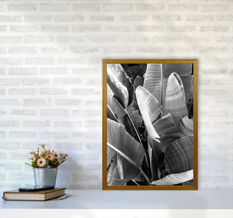 Palms Leafs Photography Print by Victoria Frost A2 Print Only