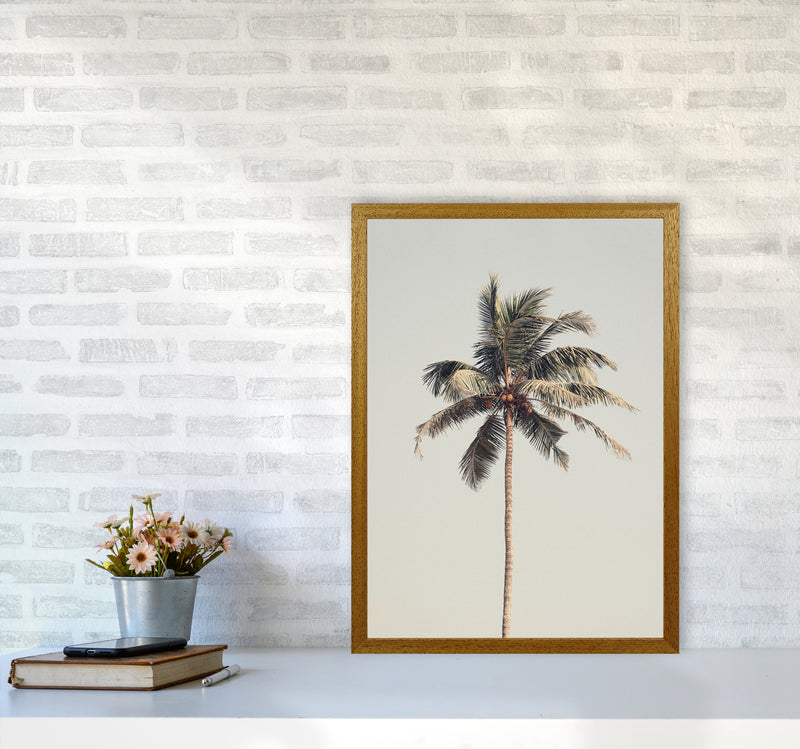 Palm tree by the beach Photography Print by Victoria Frost A2 Print Only