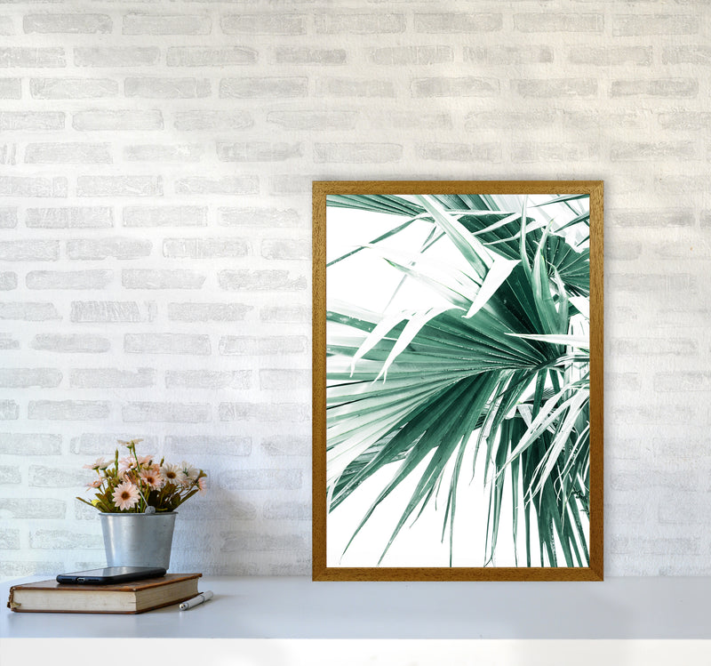Palm Leaves Photography Print by Victoria Frost A2 Print Only