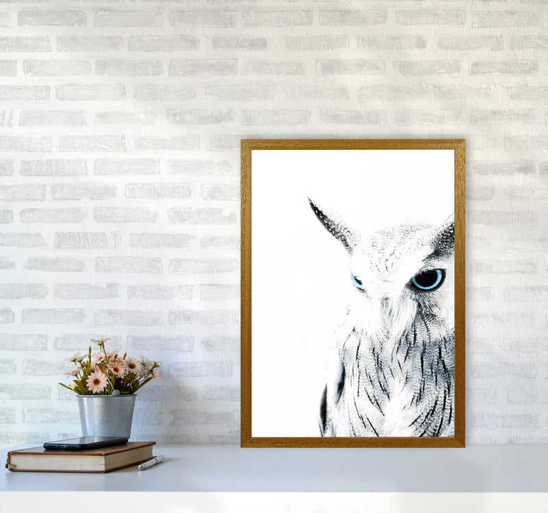 Owl I Photography Print by Victoria Frost A2 Print Only