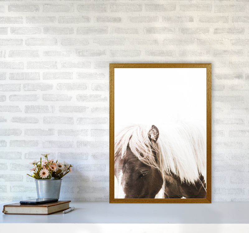 Horse III Photography Print by Victoria Frost A2 Print Only
