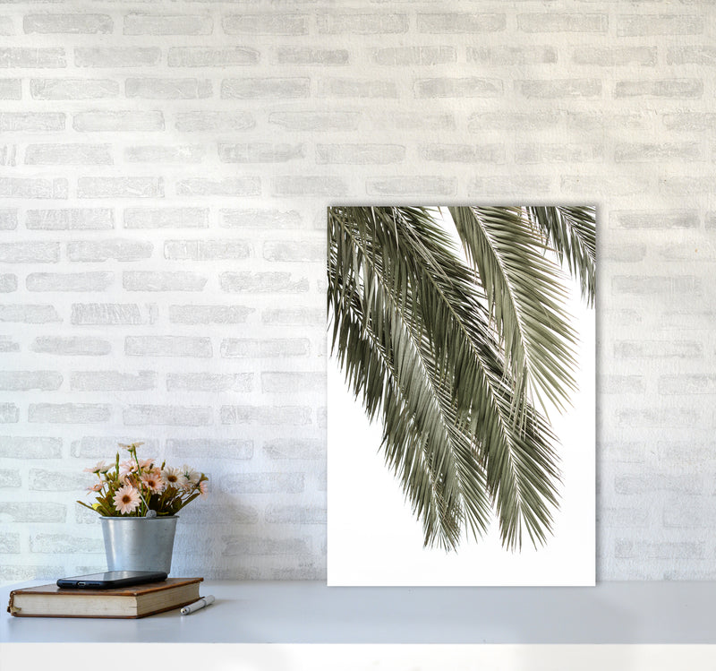 Palms Photography Print by Victoria Frost A2 Black Frame