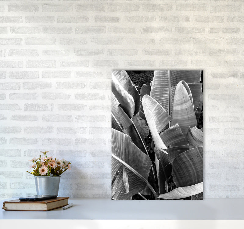Palms Leafs Photography Print by Victoria Frost A2 Black Frame