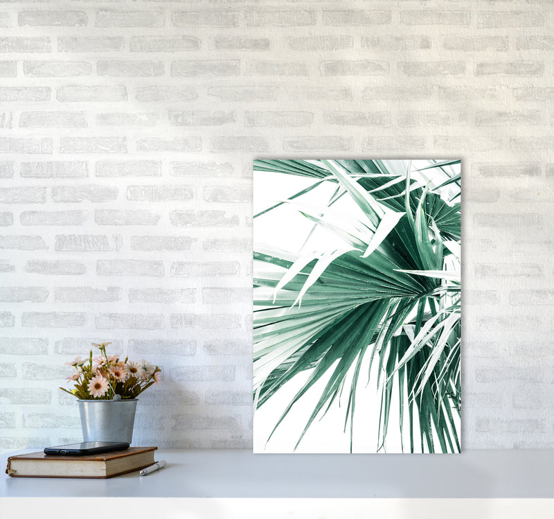 Palm Leaves Photography Print by Victoria Frost A2 Black Frame