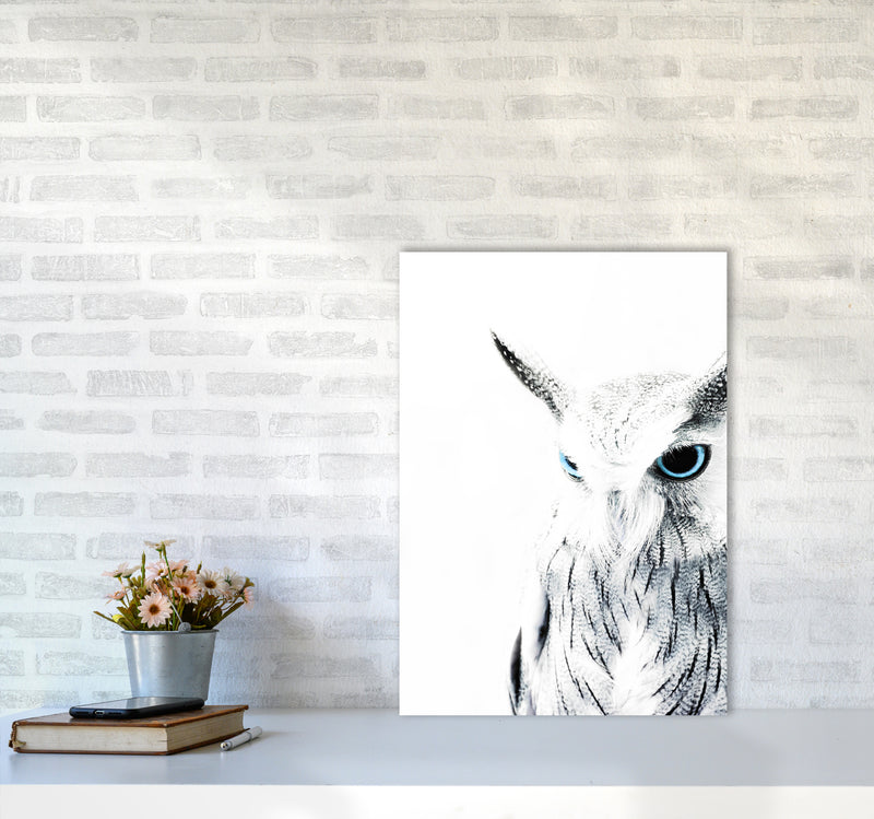 Owl I Photography Print by Victoria Frost A2 Black Frame