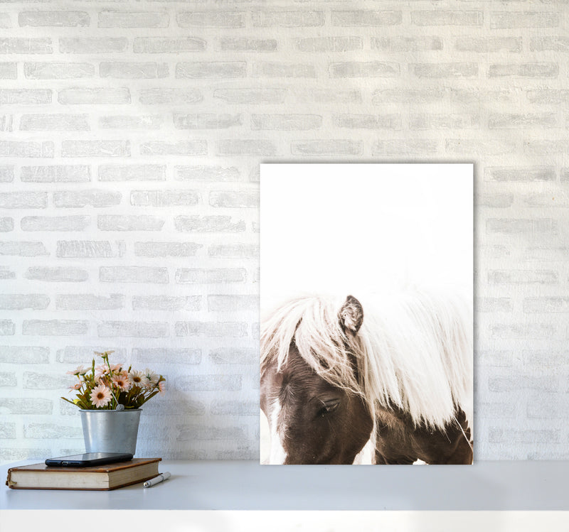 Horse III Photography Print by Victoria Frost A2 Black Frame