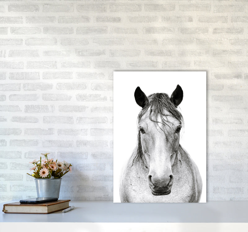 Horse I Photography Print by Victoria Frost A2 Black Frame