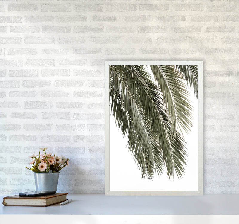 Palms Photography Print by Victoria Frost A2 Oak Frame