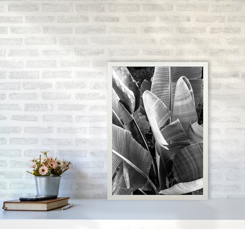 Palms Leafs Photography Print by Victoria Frost A2 Oak Frame