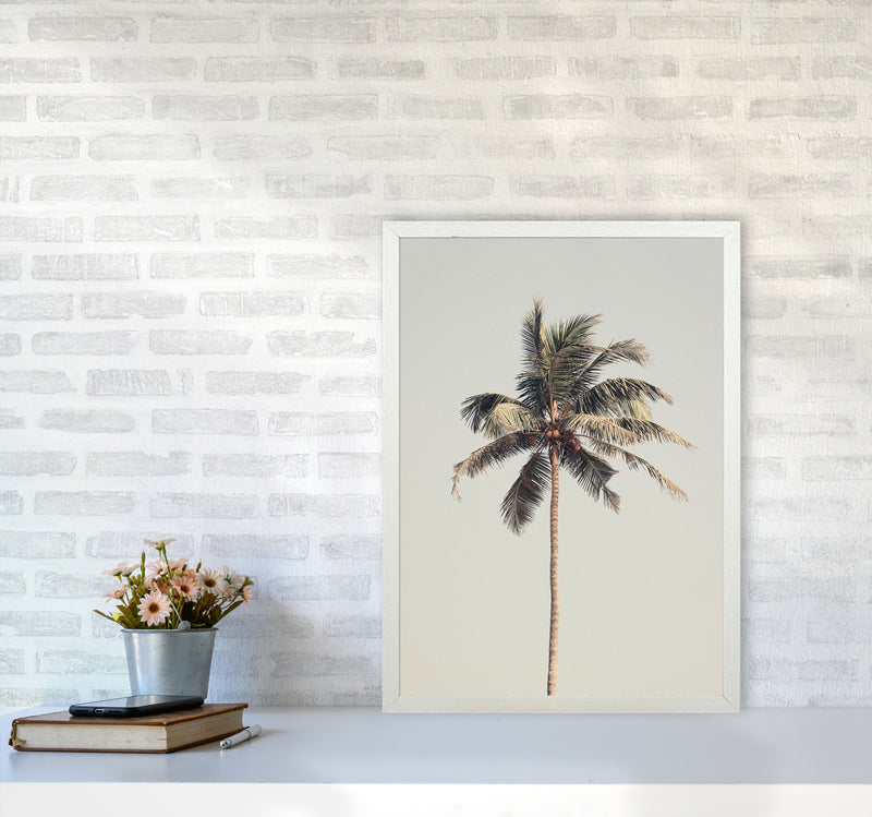 Palm tree by the beach Photography Print by Victoria Frost A2 Oak Frame