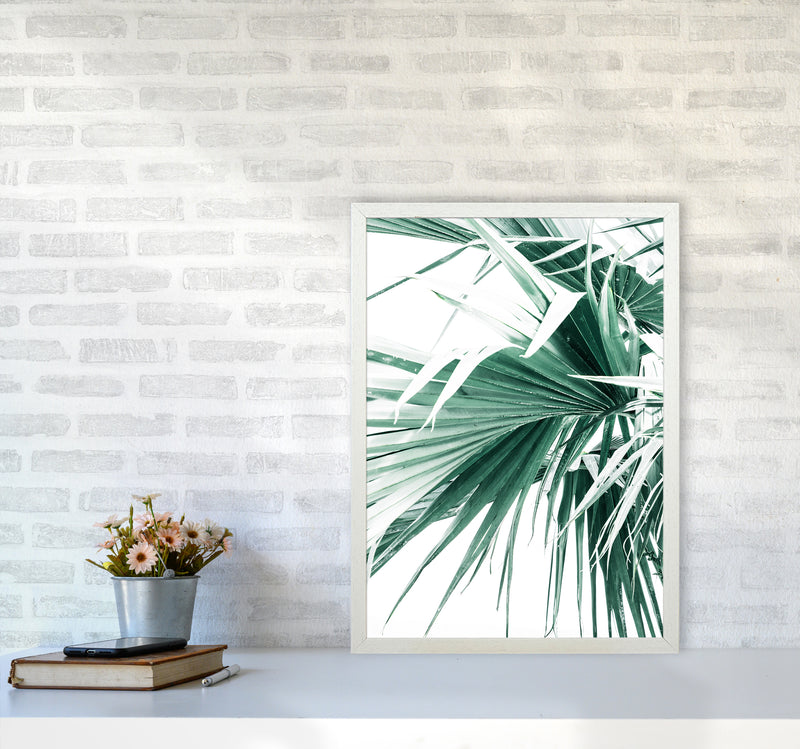 Palm Leaves Photography Print by Victoria Frost A2 Oak Frame