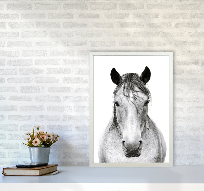 Horse I Photography Print by Victoria Frost A2 Oak Frame