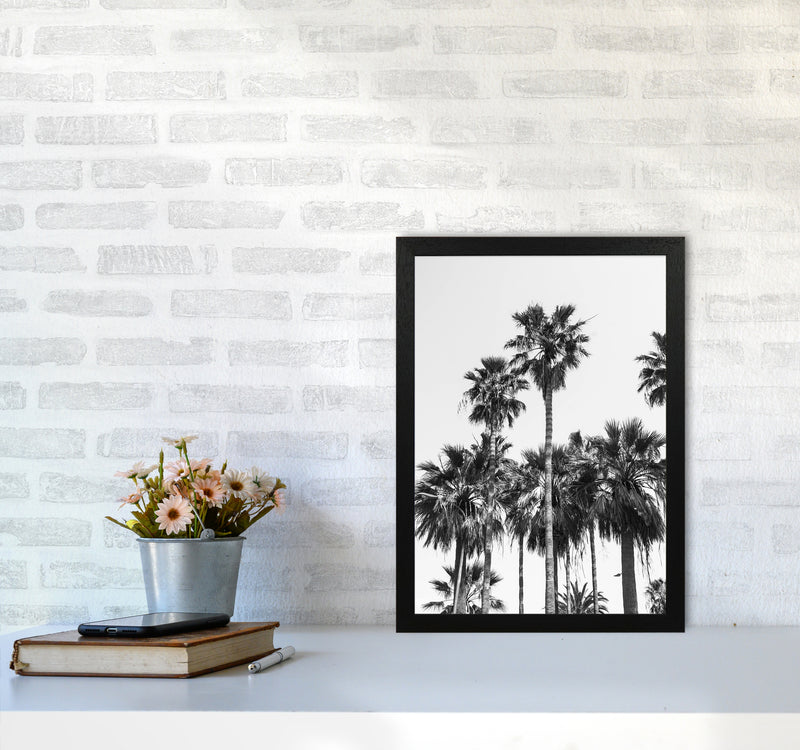 Sabal palmetto II Palm trees Photography Print by Victoria Frost A3 White Frame