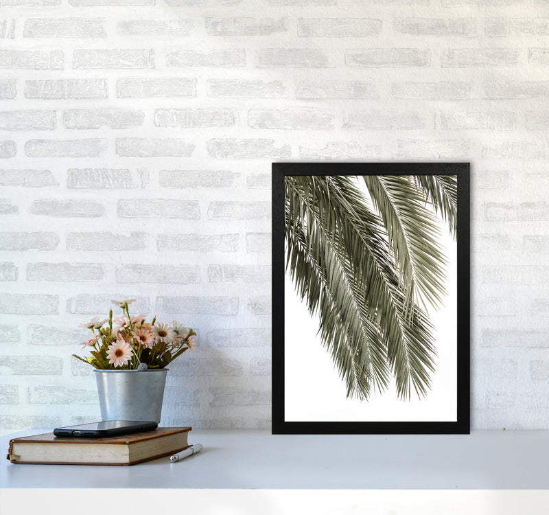 Palms Photography Print by Victoria Frost A3 White Frame