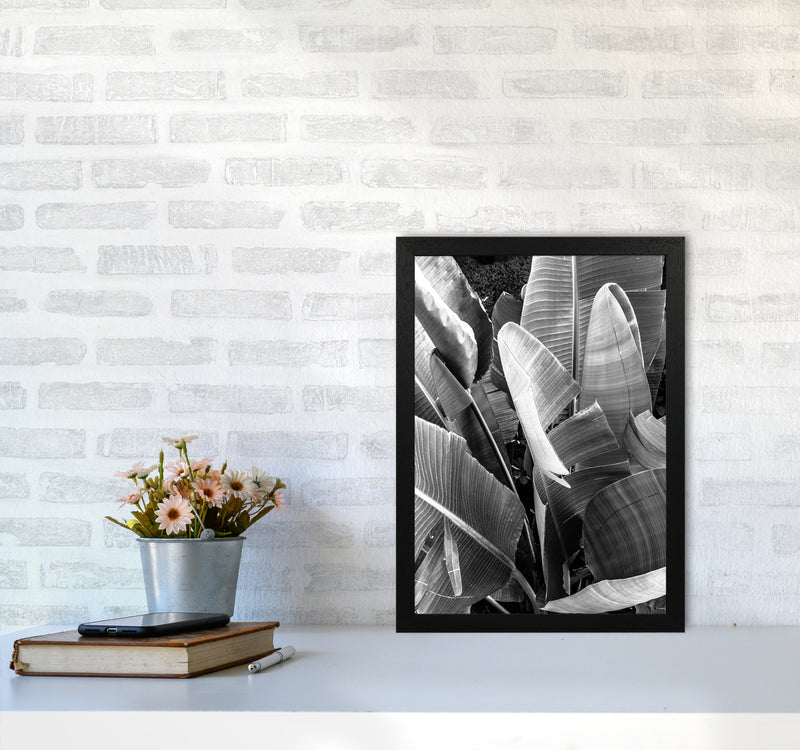 Palms Leafs Photography Print by Victoria Frost A3 White Frame