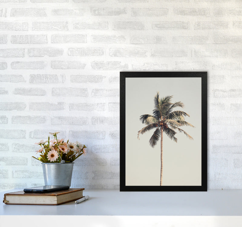 Palm tree by the beach Photography Print by Victoria Frost A3 White Frame