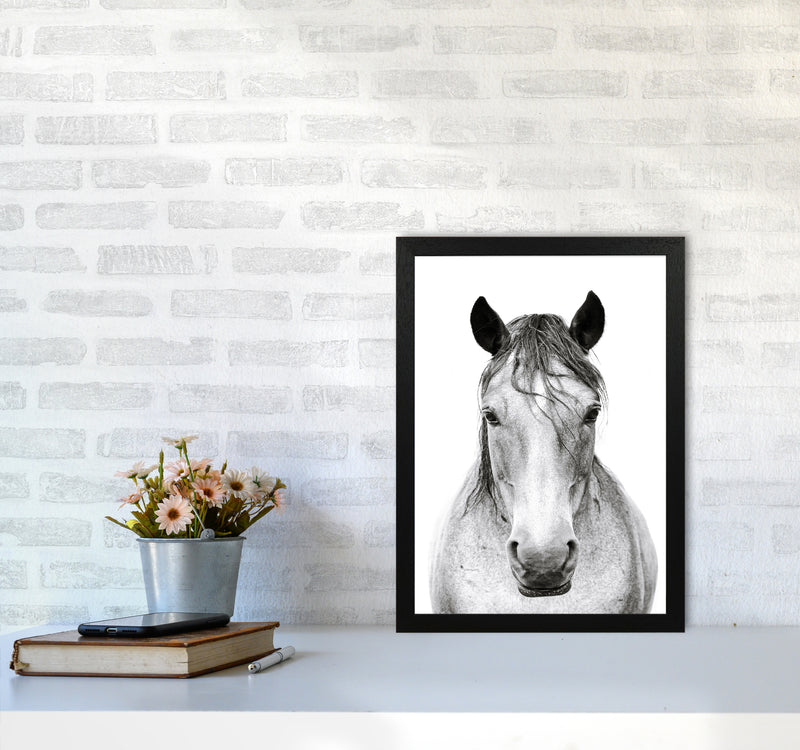 Horse I Photography Print by Victoria Frost A3 White Frame