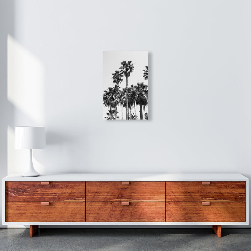 Sabal palmetto II Palm trees Photography Print by Victoria Frost A3 Canvas