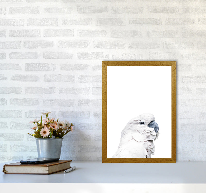 White Cockatoo Photography Print by Victoria Frost A3 Print Only