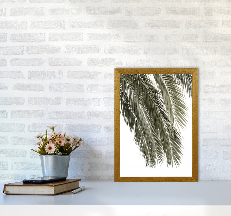 Palms Photography Print by Victoria Frost A3 Print Only