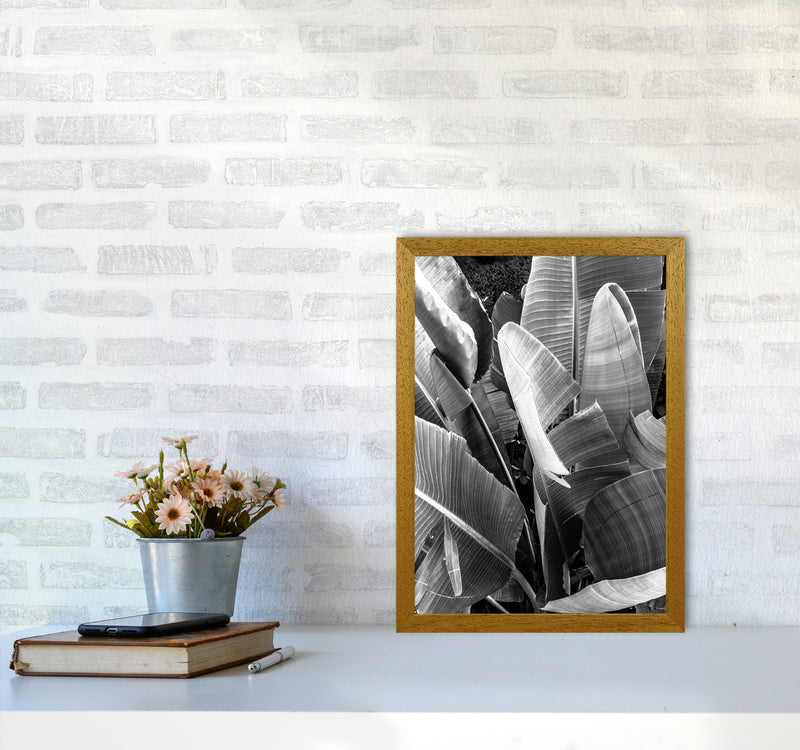 Palms Leafs Photography Print by Victoria Frost A3 Print Only