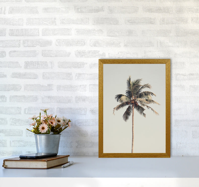 Palm tree by the beach Photography Print by Victoria Frost A3 Print Only