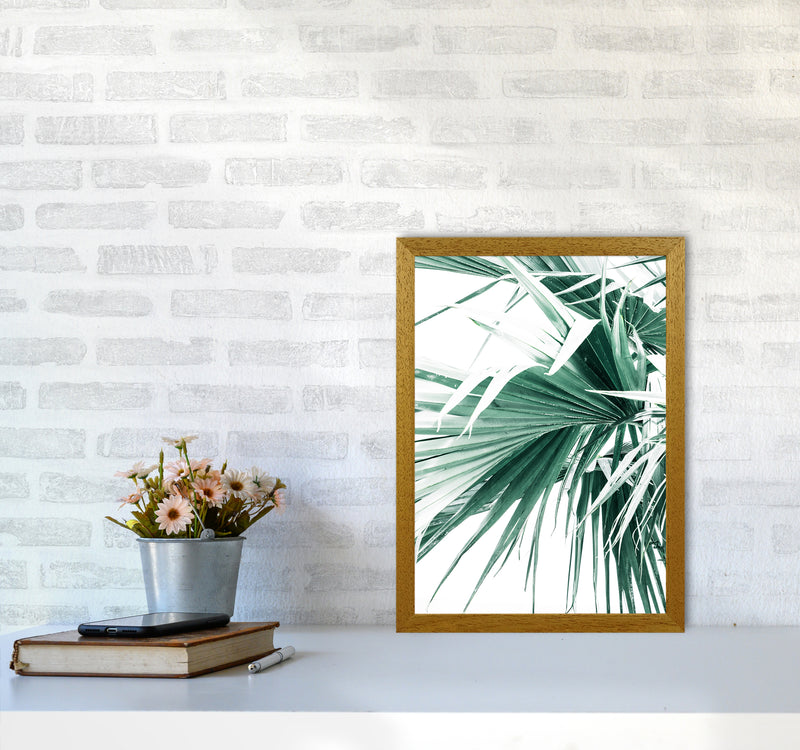 Palm Leaves Photography Print by Victoria Frost A3 Print Only