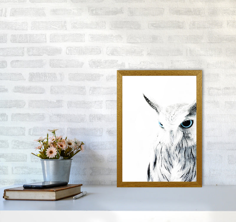 Owl I Photography Print by Victoria Frost A3 Print Only
