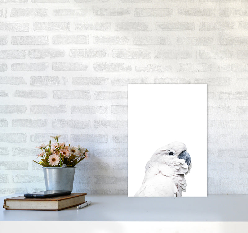 White Cockatoo Photography Print by Victoria Frost A3 Black Frame
