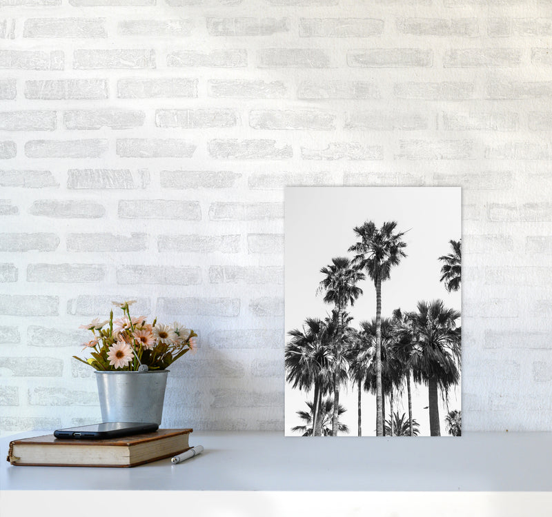 Sabal palmetto II Palm trees Photography Print by Victoria Frost A3 Black Frame