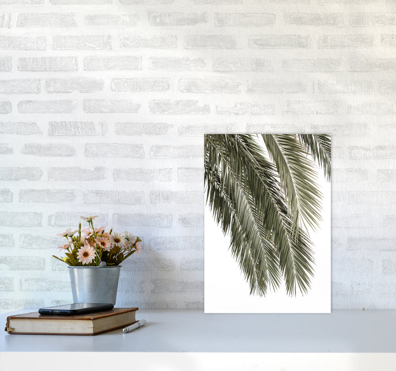 Palms Photography Print by Victoria Frost A3 Black Frame