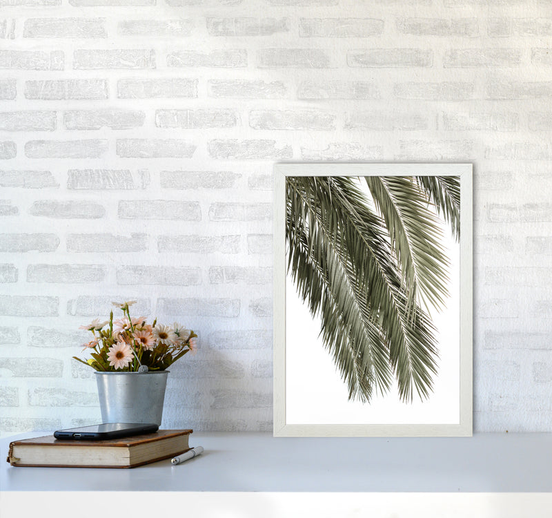 Palms Photography Print by Victoria Frost A3 Oak Frame