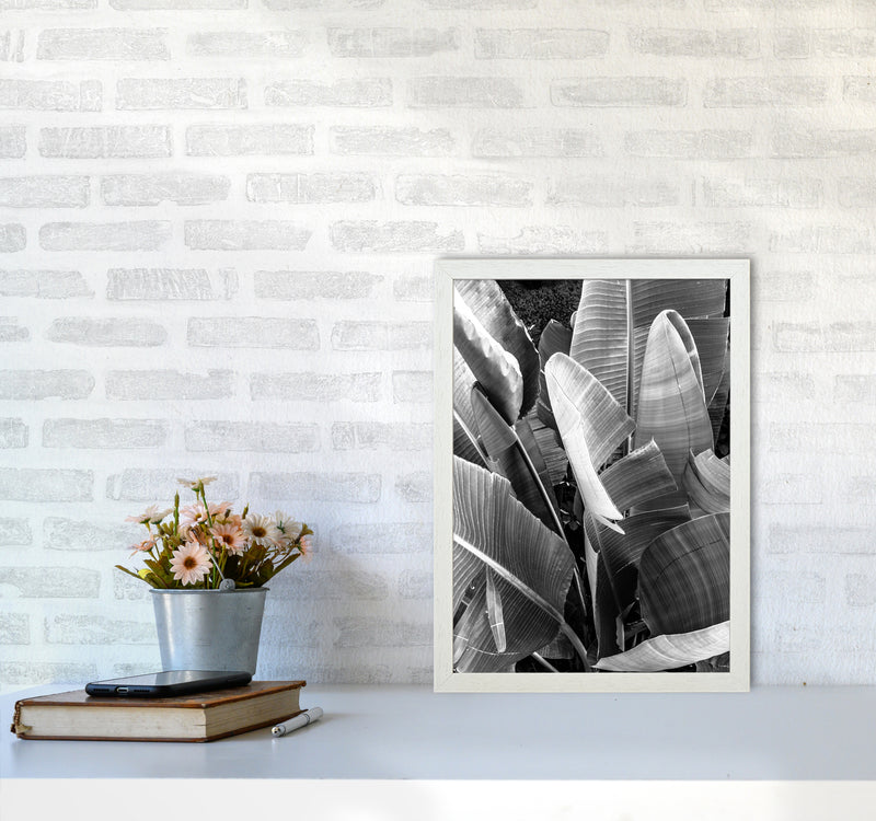 Palms Leafs Photography Print by Victoria Frost A3 Oak Frame