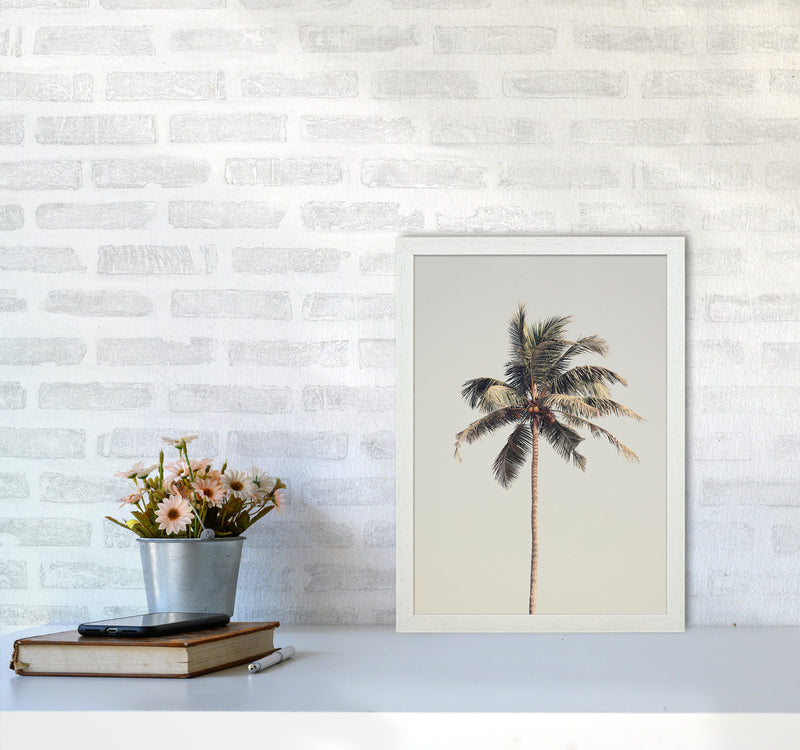 Palm tree by the beach Photography Print by Victoria Frost A3 Oak Frame