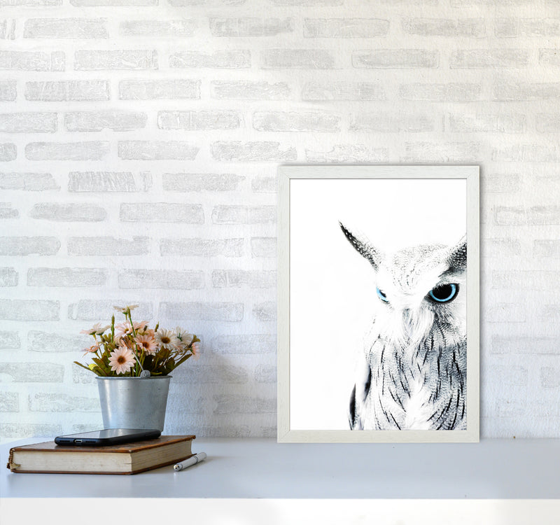 Owl I Photography Print by Victoria Frost A3 Oak Frame
