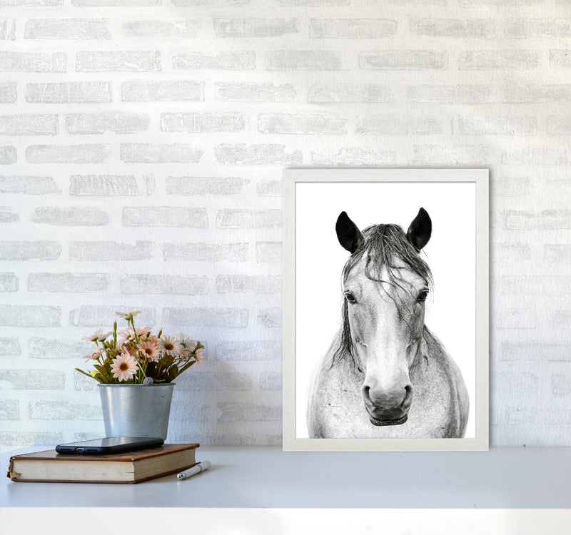 Horse I Photography Print by Victoria Frost A3 Oak Frame