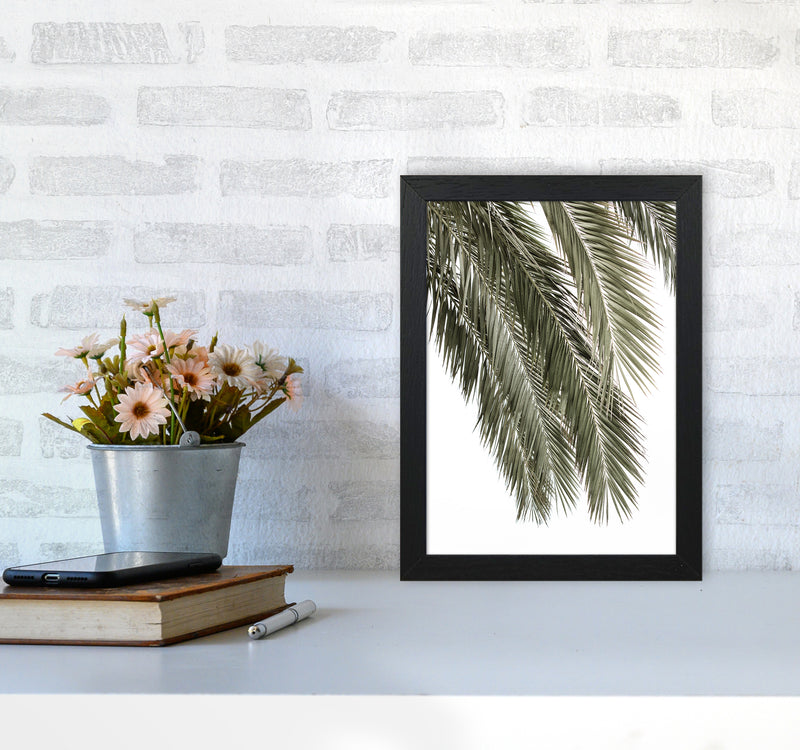 Palms Photography Print by Victoria Frost A4 White Frame