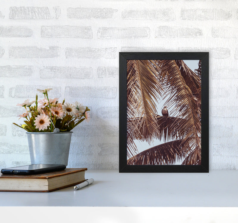 Eagle Photography Print by Victoria Frost A4 White Frame