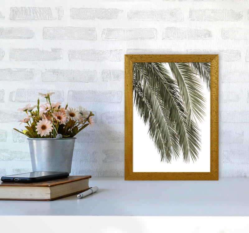 Palms Photography Print by Victoria Frost A4 Print Only