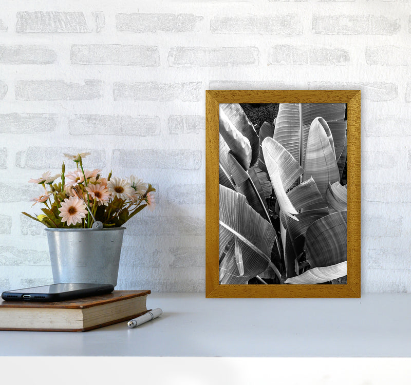 Palms Leafs Photography Print by Victoria Frost A4 Print Only