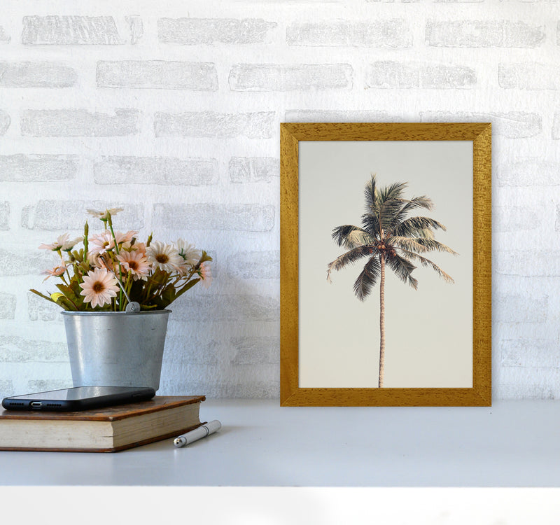 Palm tree by the beach Photography Print by Victoria Frost A4 Print Only