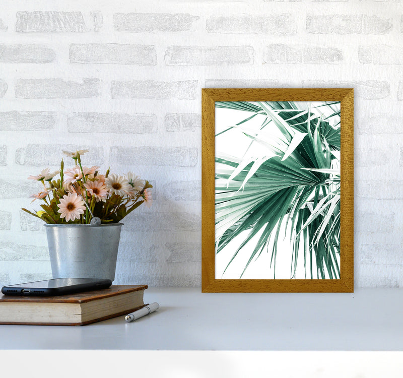 Palm Leaves Photography Print by Victoria Frost A4 Print Only